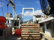 <p>Før de skal ut i Nordsjøen må det blant annet skiftes trål. Foto: Andrea Bærland</p>