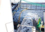 <p>For å behandle laksen mest mulig skånsomt, jobber Hydrolicer-teametkontinuerlig med å gjøre forbedringer på både system og lekter. Foto: Hydrolicer.</p>