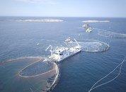 <p>Avlusingslekteren Hydro Flow har 4 linjer og en kapasitet på cirka 200 tonn fisk per time, mens den andre lekteren Hydro har 6 linjer og en kapasitet på ca. 250-300 tonn per time. Foto: Hydrolicer.</p>