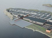 <p>An illustration of how the salmon farm will look when completed.</p>