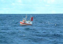 Færre fiskere, større fartøy