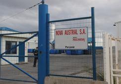 Nova Austral nekter for å ha instruert noen til å manipulere dødelighetstall