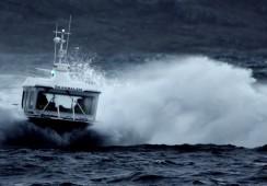 Bjørøya kan vise til solid driftsresultat