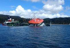 Brønnbåt i Chile sank med 200 tonn laks ombord