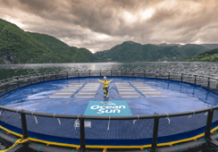Vil gi strøm til havbruk med flytende solceller