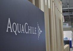 Utilidades de AquaChile ascienden a US$23 millones en el primer semestre de 2017