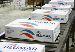 250 trabajadores de Salmones Blumar fueron enviados a cuarentena