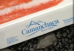 Camanchaca realiza primer embarque de salmón desde aeropuerto de Concepción a Miami