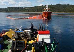 Siete empresas internacionales licitan para reflotamiento de wellboat Seikongen