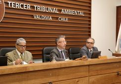 Tribunal escuchó alegatos por salmonicultoras en las costas de Valdivia y Mariquina