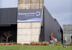 Multiexport cierra T1 con altos retornos y cerca de consolidarse en Magallanes