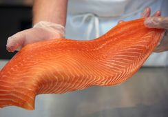 Así afectó el precio a los envíos de salmón chileno en octubre