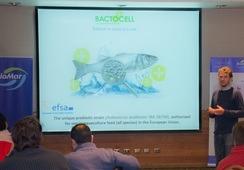Probióticos: la tendencia en que Biomar Chile trabaja para mejorar la inmunidad