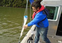 Aysén: IFOP realizó análisis de mancha roja en bahía Chacabuco