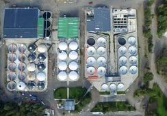 Salmones Camanchaca invertirá US$29 millones y proyecta producción al 2025