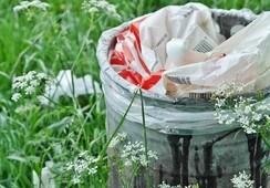 ¿Cómo afectará la Ley de Reciclaje a la industria salmonicultora?