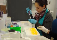 FIPA licita nuevos proyectos de investigación