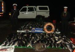 Robo de salmones: investigan conducta irregular de jefe de la Bicrim