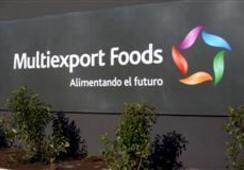 Multiexport incorpora a Mitsui  en propiedad de filial salmones