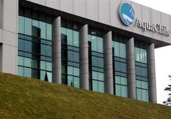 Presidente de Agrosuper detalla beneficios por reestructuración de AquaChile