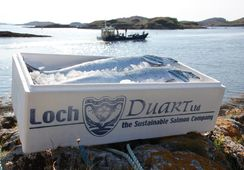 Former Edinburgh Salmon Company owner named new Loch Duart chair