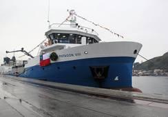 Refutan denuncia sobre peligrosidad de recambio de aguas de wellboats en zonas de ballenas