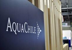 AquaChile es la mejor salmonicultora pagadora a proveedores Pyme