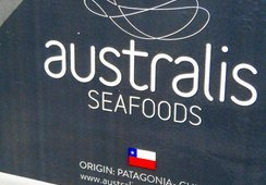 Australis se hace parte de proceso por eventual colusión en alimento para salmón