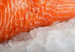 Leve baja en el precio de salmón noruego