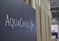 Accionistas de Aquachile aprueban proceso de listado en Bolsa de Oslo