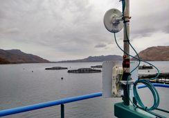 Salmon farmer nets superfast broadband for community
