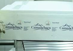 Salmones Camanchaca frena envíos a Rusia tras bloqueo de autoridad