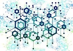 """Acuicultura: """"Programa Darwin"""" entregará hasta $60 millones a emprendedores científicos"""