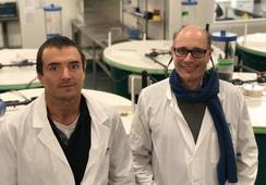 F4F representará en Latinoamérica a  consorcio ligado a producción de insectos