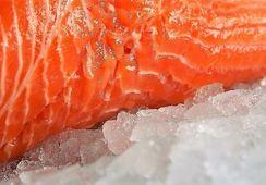 Precio del salmón noruego continúa a la baja