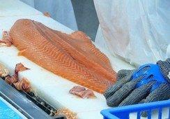 Mayo: Exportaciones de salmón se incrementan en 3,3%