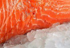 Leve alza en el precio del salmón noruego