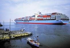 Maersk Line optimiza las exportaciones de salmón chileno