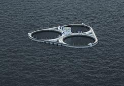 Astafjord Ocean Salmon får medhold i klagesak
