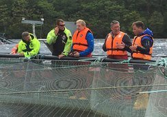 Certification seen to improve salmon farms, says ASC