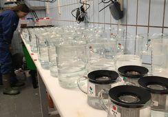 Hva vet vi om hydrogenperoksid?