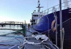 Marine Harvest claims 27% recapture after mass escape