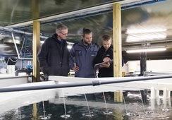 To teknologiselskap innen havbruk slår seg sammen
