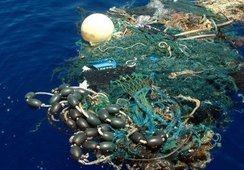 ASC establece normas de eliminación de plástico para centros de cultivo