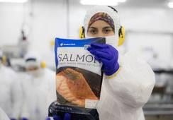 Salmonicultores magallánicos afirman que casos Covid en la industria son acotados