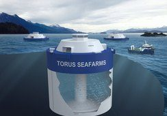 Nei til konseptet «Torus Seafarm»