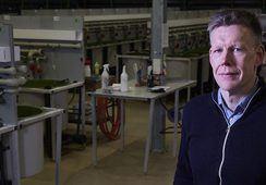 Sterk tro på avl og oppdrett av norsk torsk