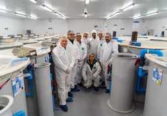 Productores de camarón conocen la industria chilena del salmón