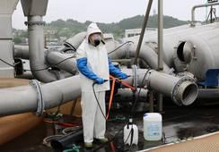 Setter fokus på hygiene i havbruksnæringen