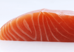 Analysts: Norway algae crisis will push up Q4 salmon price